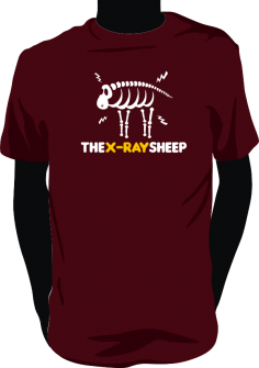 the-x-ray-sheep